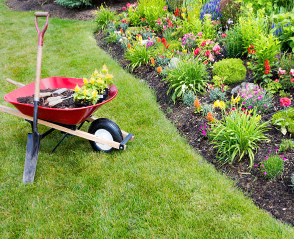 garden maintenance services - Garden Mainenance